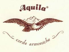 Logo Aquila color